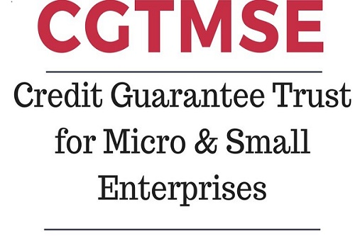 Micro Units – where to cover? CGTMSE or CGFMU